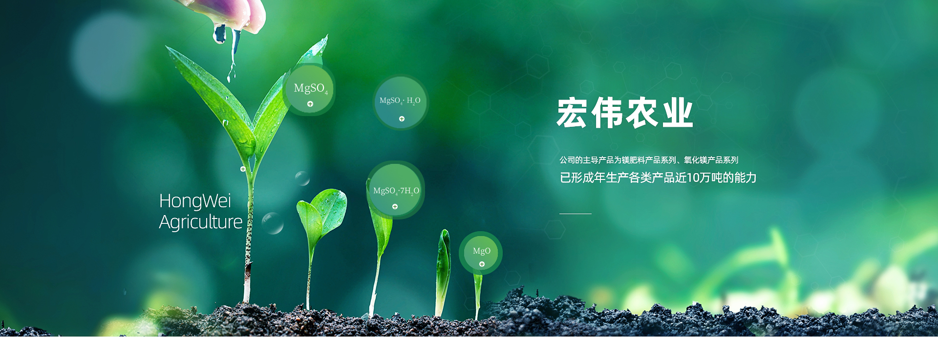 http://www.agri-hongwei.com/data/upload/201912/20191216120141_133.jpg